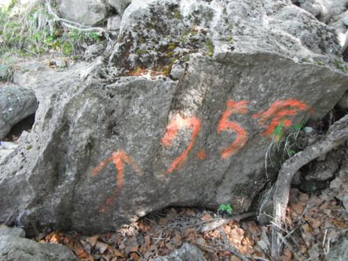 Dscf6336